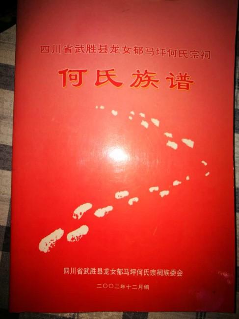 《何氏族谱(四川省武胜县龙女郁马坪何氏宗祠)》(封面)