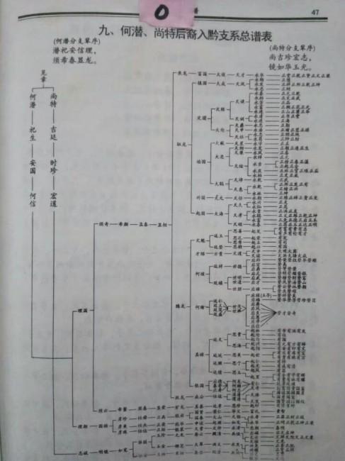 何氏宗谱:何潜、尚特后裔入黔支系总谱表