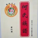 《湖南平江庐江堂何氏族谱》(封面)