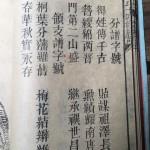 (江西省抚州市临川区)灵山何氏十四修族谱:分谱字号