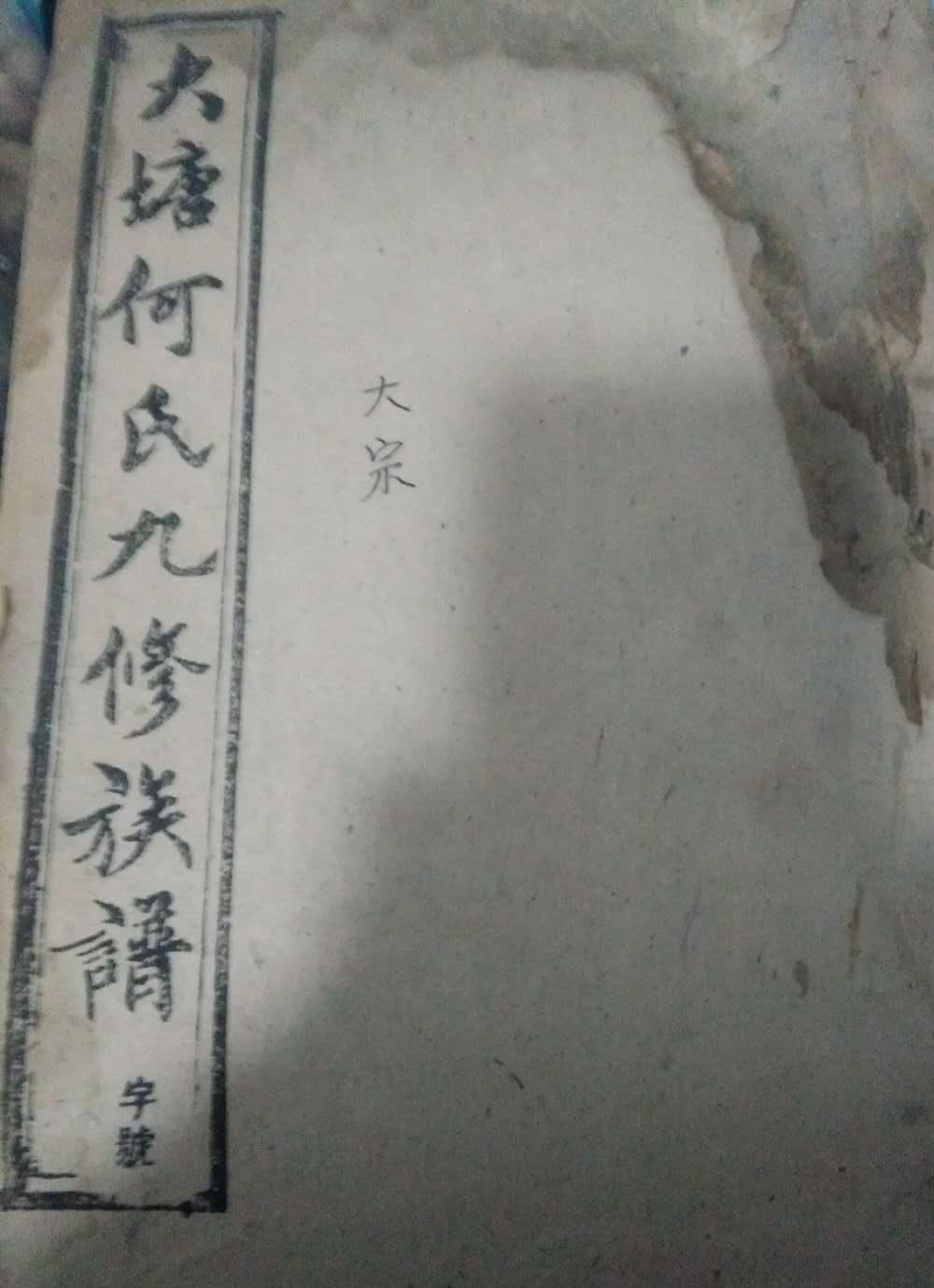 《大塘何氏九修族谱》(封面)